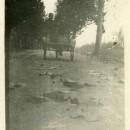 La Padova – Bovolenta