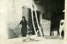 Antonia e l'oca Medea