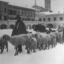 Il pastore Edoardo